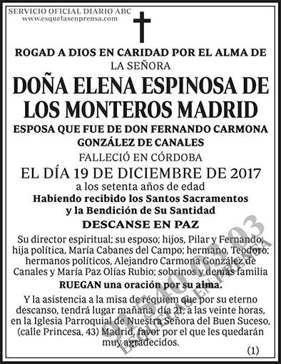 Elena Espinosa de los Monteros Madrid